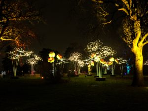Kew-Gardens-at-night