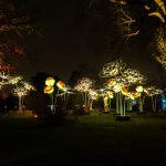 Kew-Gardens-at-night